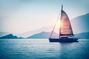 An NVDC Vessel Search Can Help You